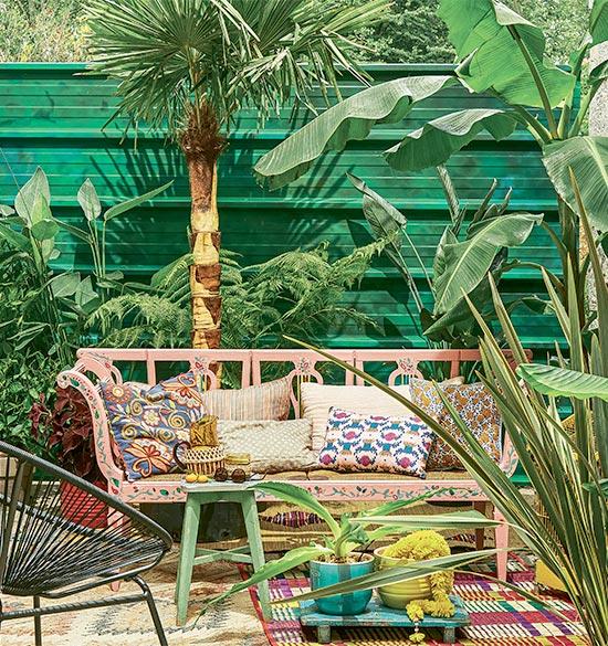 Ma petite jungle haute en couleurs !