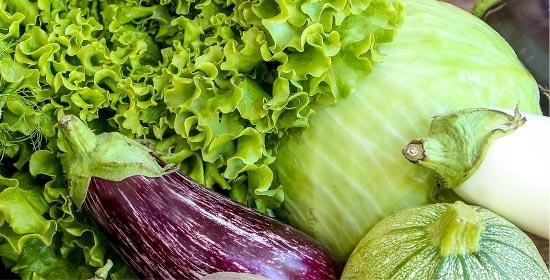 Graines et plants de légumes