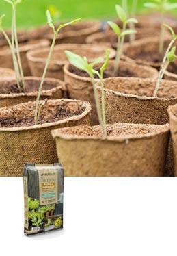 Terreau semis et repiquage